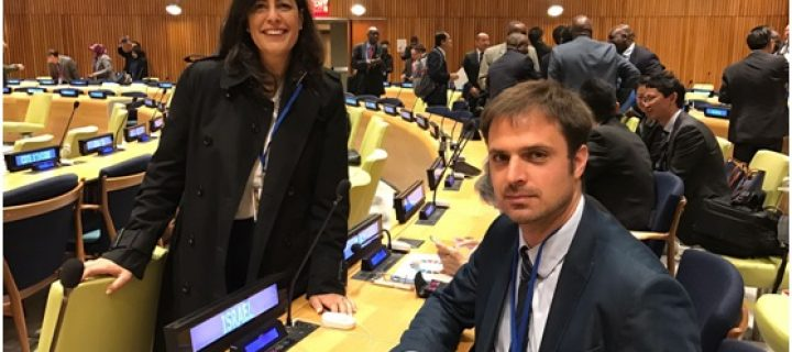 JNF beim 12. UN Forum on Forests in New York